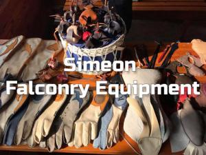Simeon – Falconry Equipment